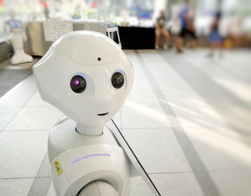 Robotik AG in Schulen
